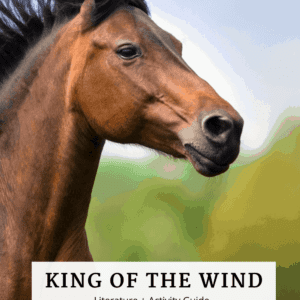 King of the Wind Book Guide Cover Image Horse running