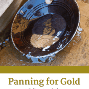 Panning for Gold Kid's Activity Pin Image