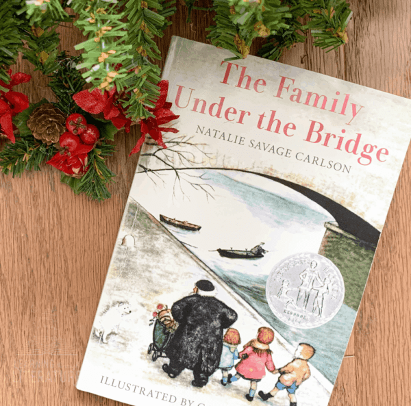 The Family Under the Bridge - Book Guide cover image