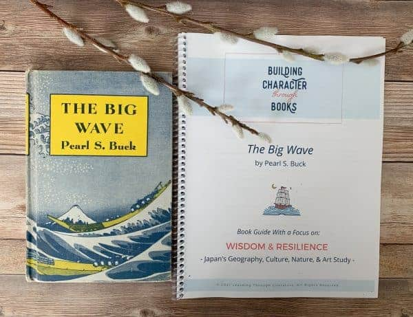 The Big Wave Book Guide Sample