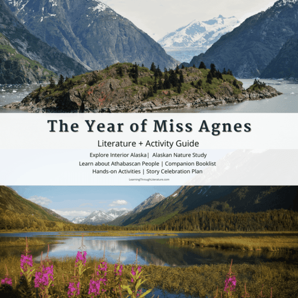 The Year of Miss Agnes Guide Sales Image
